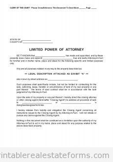 Sample Printable Limited Power Of Attorney Form  Printable Real