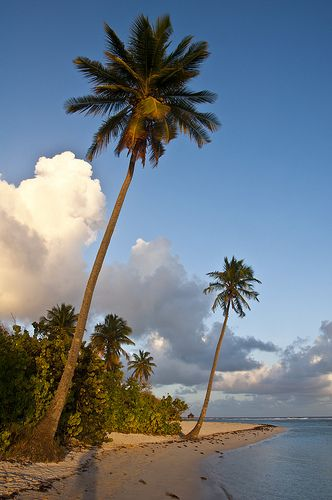 Bois Jolan Beach | Guadeloupe | French Antilles (by maxime cazalas)