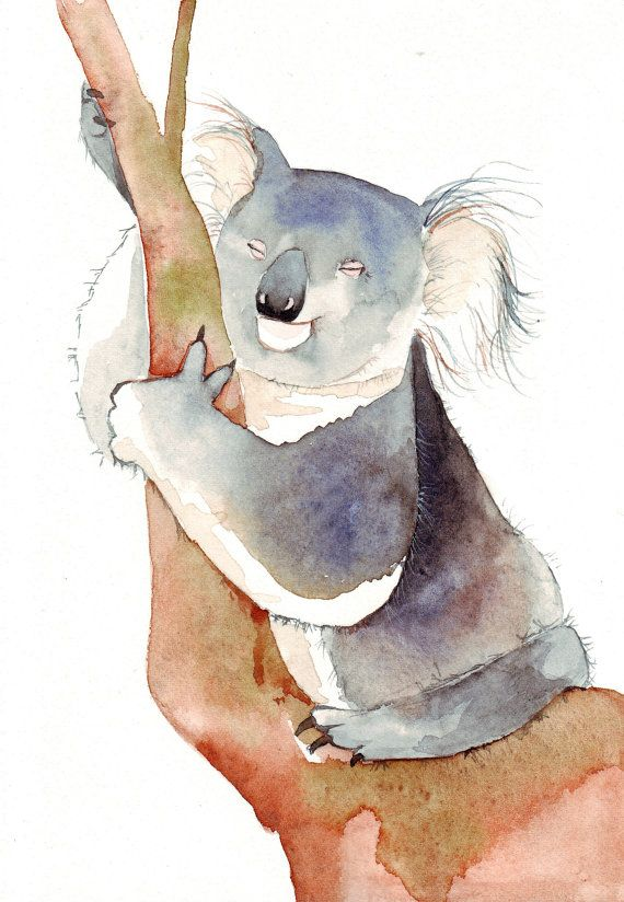 Watercolour Koala Koala Illustration Bear Watercolor Animal