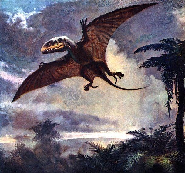 25 Strangest Prehistoric Creatures To Roam The Earth #prehistoriccreatures Dimorphodon #prehistoriccreatures