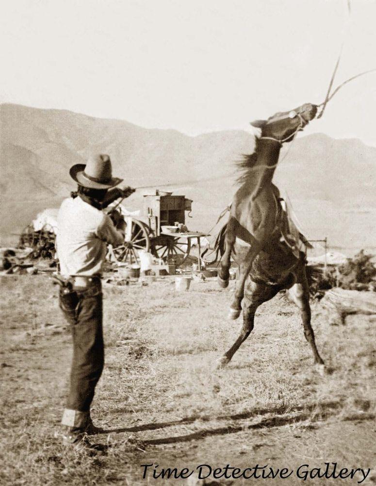 Old West Cowboy Vintage Antique Western Horse Photographs Photo Picture 8x10