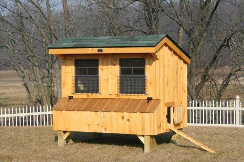 Here Is The Step By Step Instruction How To Build The Chicken Coop