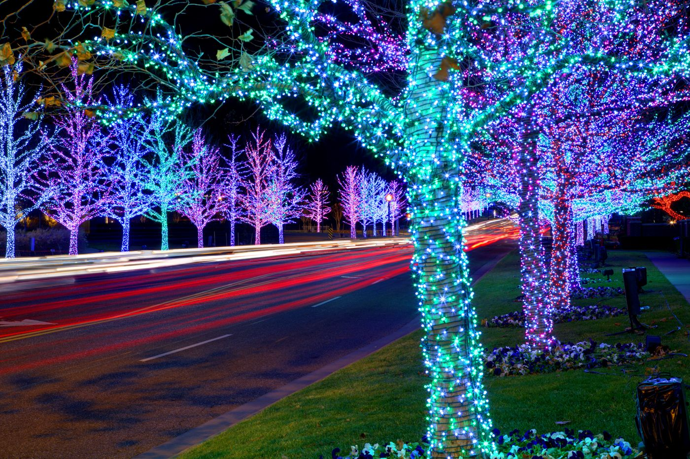 Chesapeake has some AMAZING xmas lights for sure
