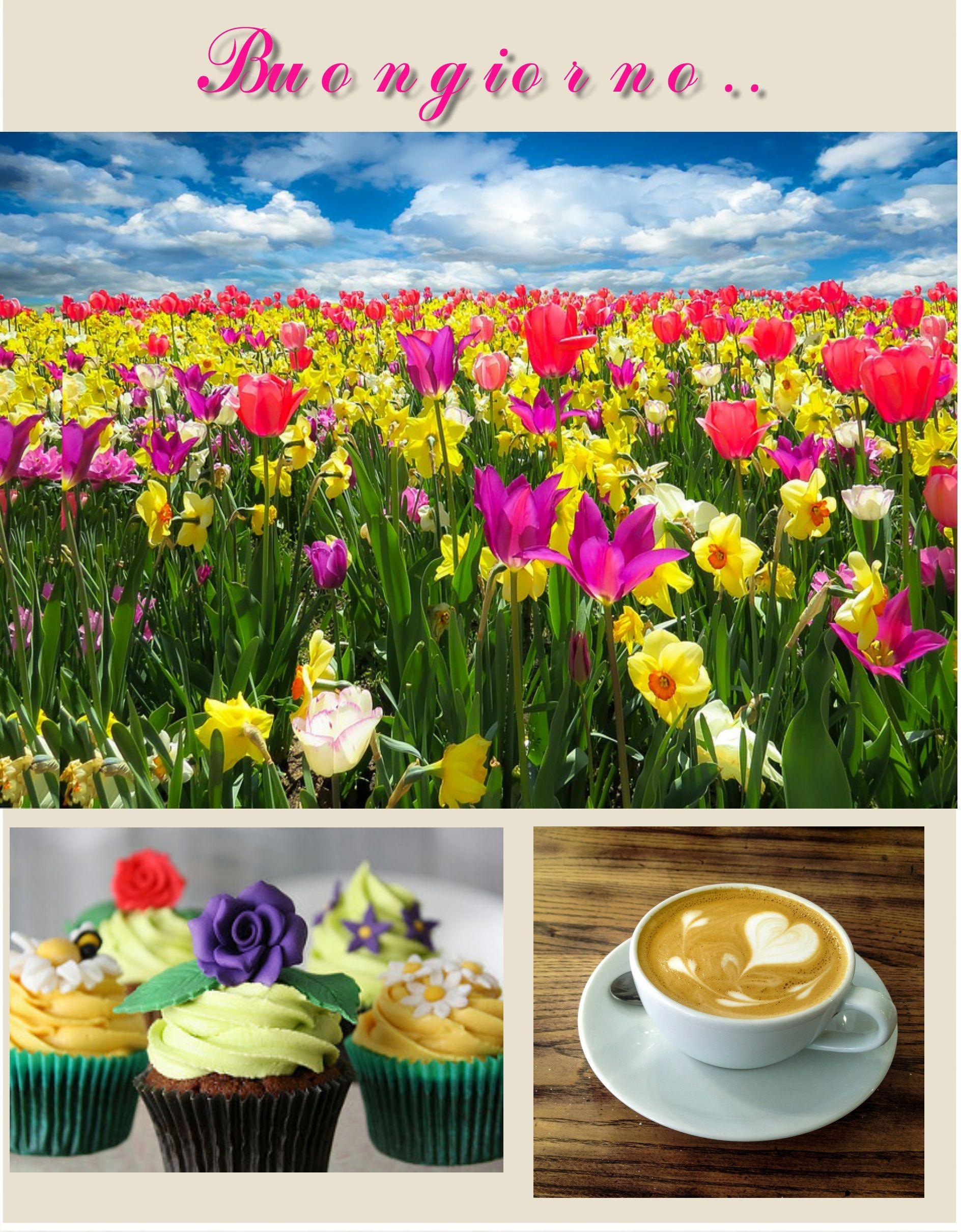 #Buongiorno #goodmorning #dolci #sweet #cuocakes #caffè #coffee #fiori #flowers #primavera #spring #colazione #breakfast