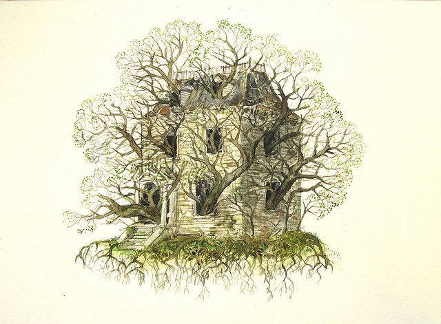 'treehouse'