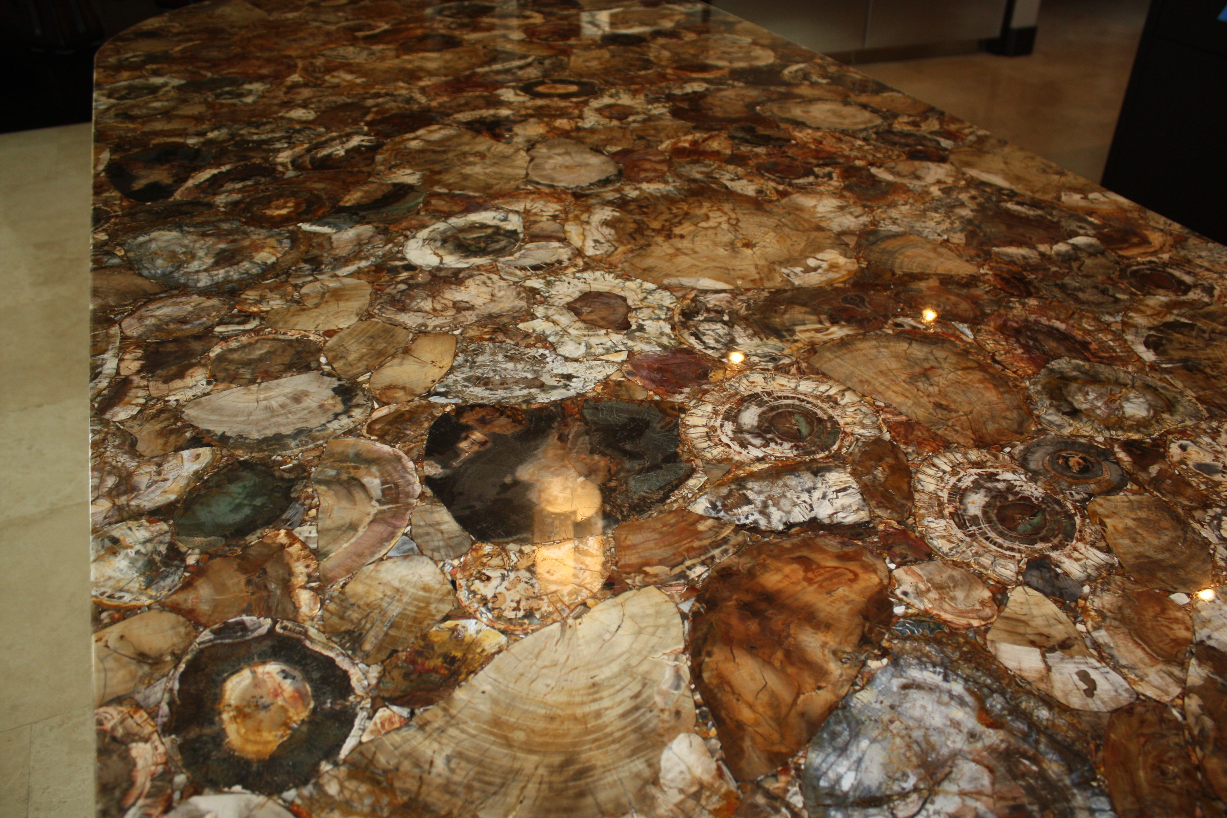 Petrified Wood Counter By Lucasso Stone Ridiculously Beautiful