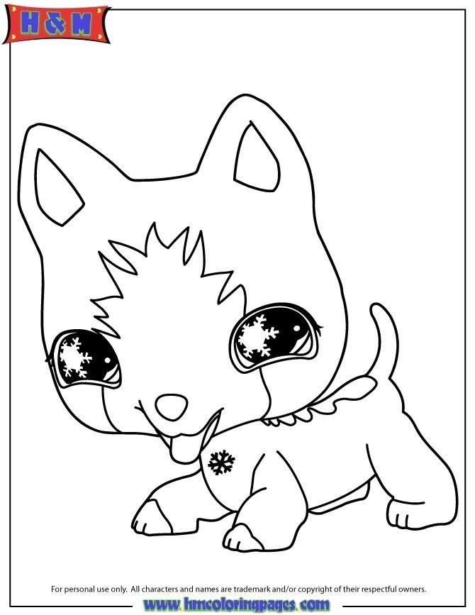 Coloring Page Littlest Pet Shop Free Dog Coloring Page Coloring Pages Pet Shop