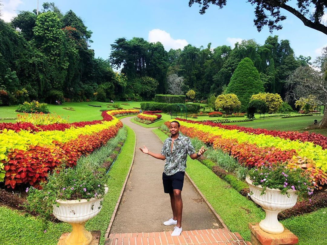 Royal Botanic Gardens Lonely Planet Enchanted Adventure Garden Botanical Gardens Royal Garden