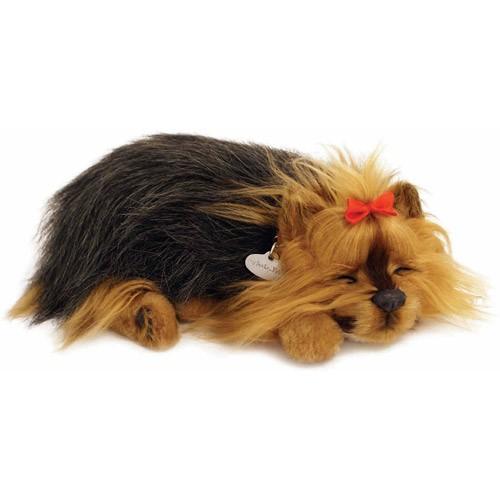 Perfect Petzzz Yorkie Yorkie Puppy Yorkie Sleeping Puppies