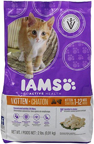 Iams Proactive Health Kitten 1 Year Old And Younger Chicken Recipe Dry Cat Food 2 Pounds Click On The Image For Additional D Kitten Food Chicken Cat Cat Food