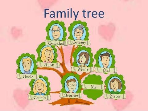 شجرة العائلة باللغة الانجليزية للسنة الاولى متوسط Shajara In 2021 Family Tree Brother Sister My Cousin