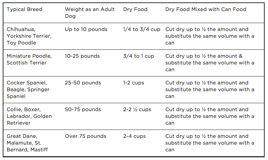 Dog Feeding Tips How Much And How Often Should I Feed My Dog Can Dogs Eat This Dog Food Advisor Types Of Dog Food Dog Feeding