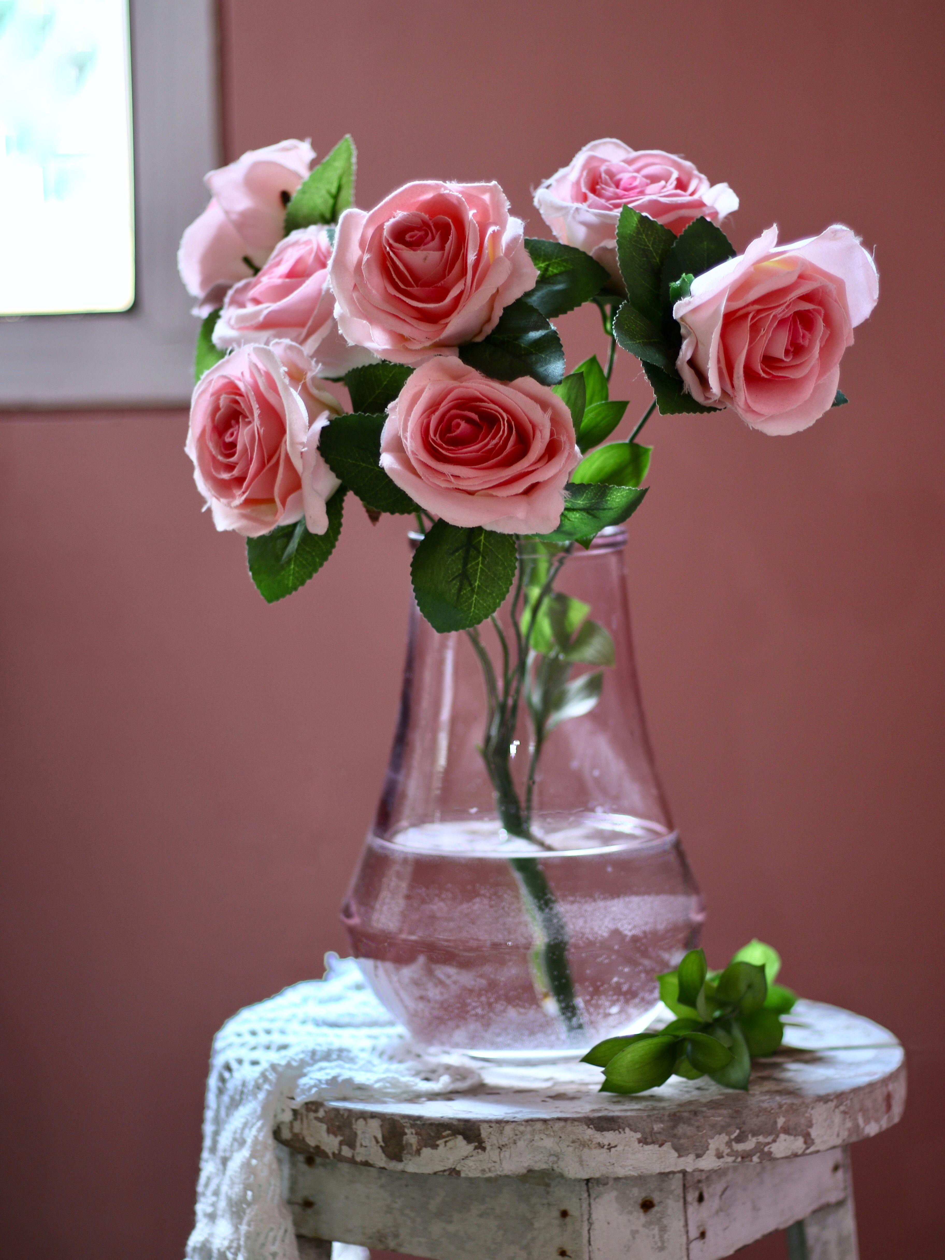 Pinky Rose Photo By Lestijoe Rose Photos Pinky Rose Beautiful Flowers