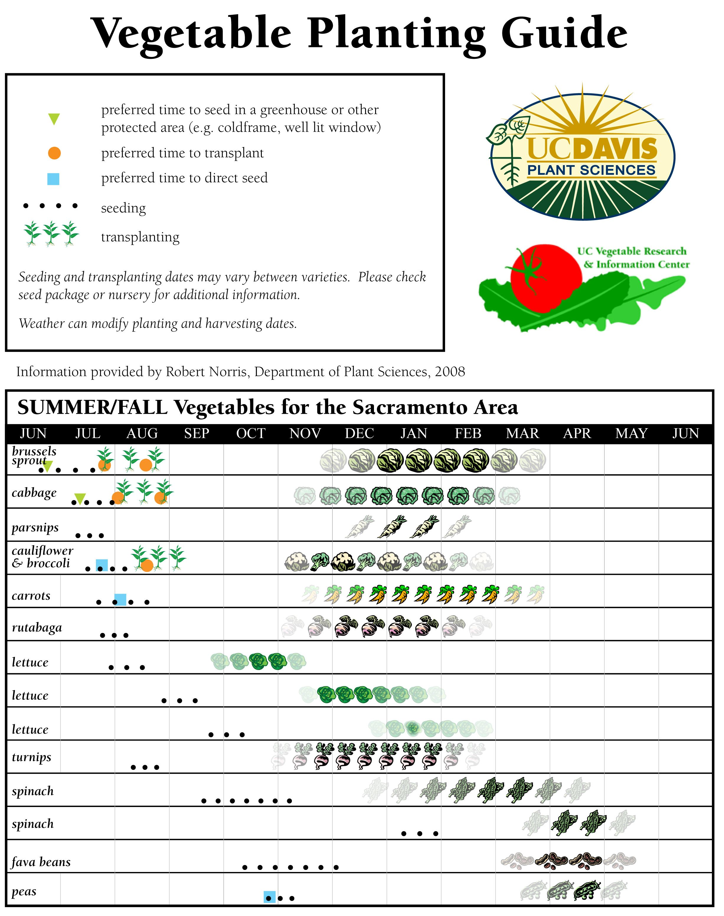 Uc Vegetable Planting Guide For The San Joaquin Valley Vegetable