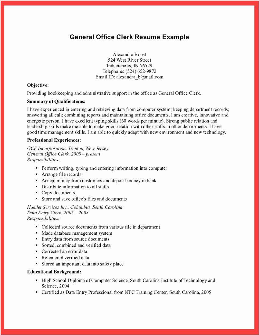 Example Resume For Job Clerk