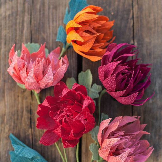 Crepe paper mums how to make paper flowers for fall crepe paper here i will show you how to make paper flowers with this simple crepe paper technique i just love the way the crepe adds a rustic texture to the flowers mightylinksfo