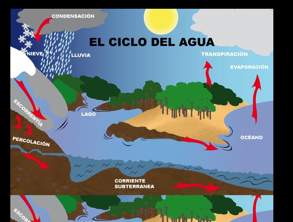 Dibujos Del Ciclo Del Agua Para Imprimir Ciclo Del Agua Ciclo Del Agua Dibujo Imprimir Sobres