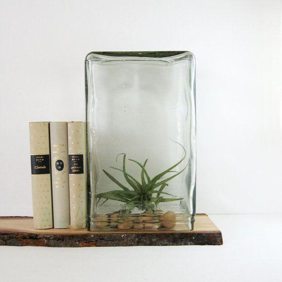 Vintage Glass Battery Jar Industrial Decor Large Terrarium