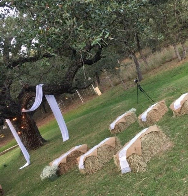 Our Backyard Wedding    (For Under $1,000!)