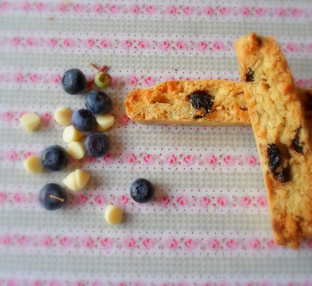 Blueberry Biscotti