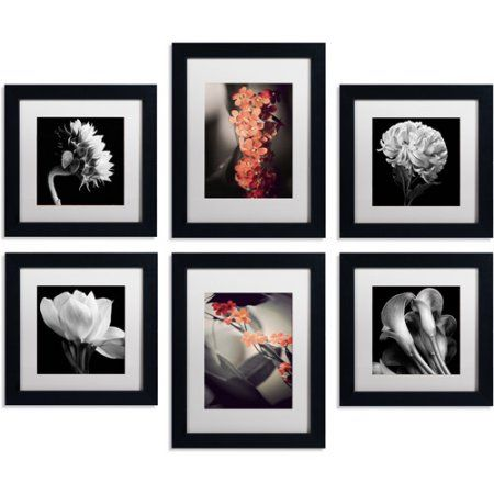 Trademark Fine Art Floral Gallery Four 11 X 11 And Two 11 X 14 Canvas Art Wall Collection Set Of 6 Black Frame Walmart Com Gallery Wall Art Set Gallery Wall