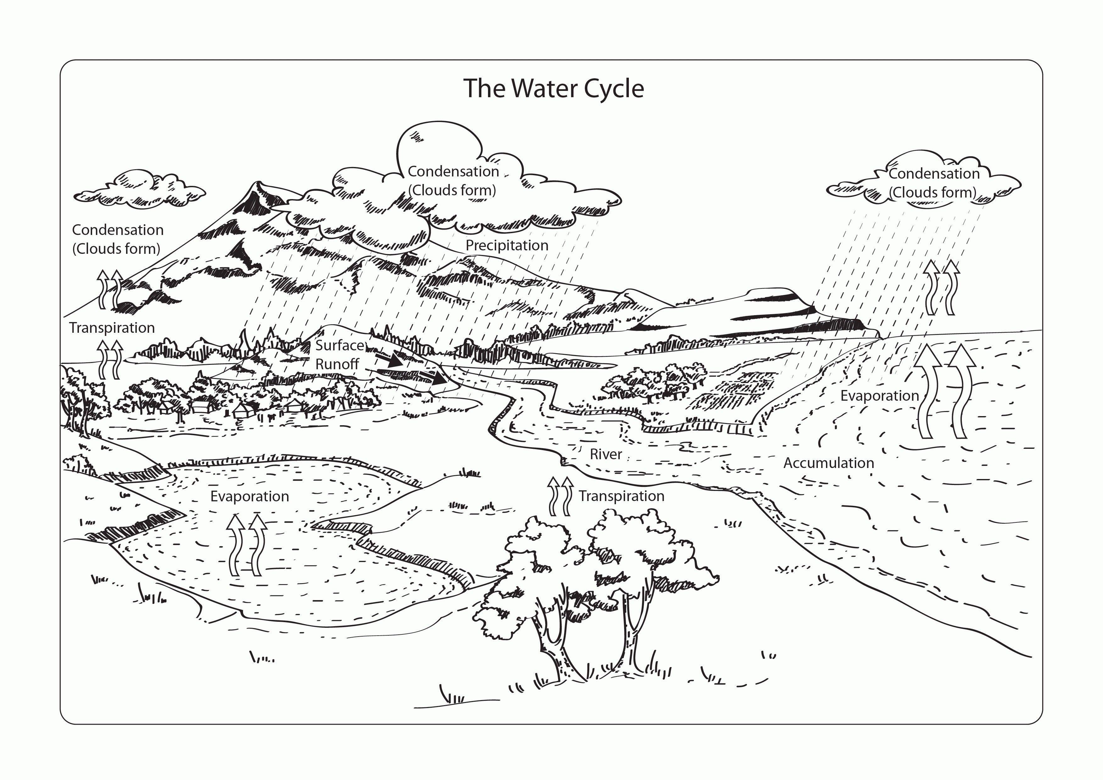 Water Cycle Coloring Page Water Cycle Coloring Page