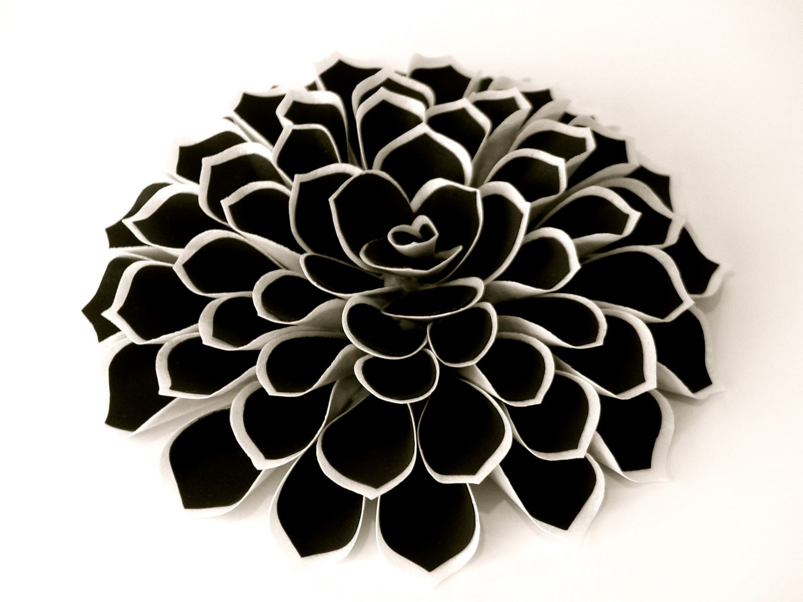 Black white fantasy flower hand cut from black frosting sheet black white fantasy flower hand cut from black frosting sheet wafer dhlflorist Image collections