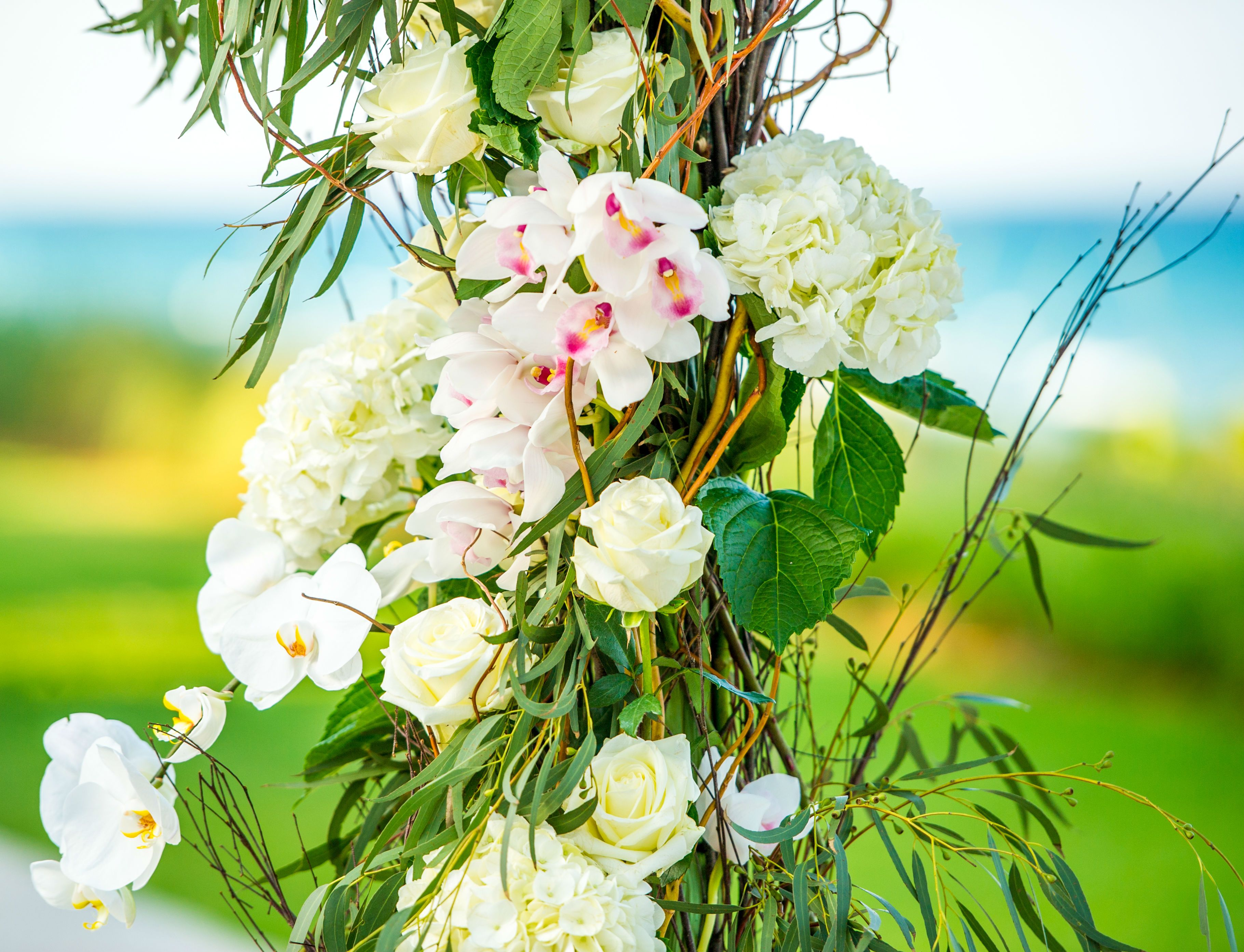 Four Seasons Palm Beach   Photography: Suzanne Delawar Studios ...