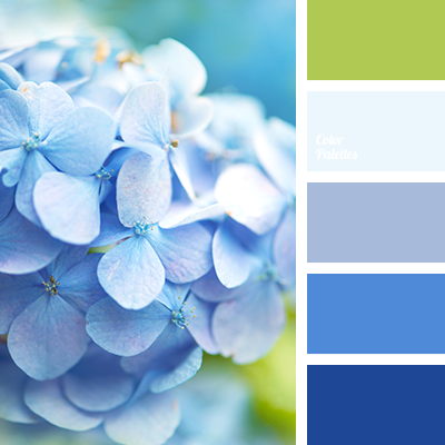 Blue Color Palettes Shades Palette For Home Green And Hot Hydrangea Pale Light White Violet Lilac