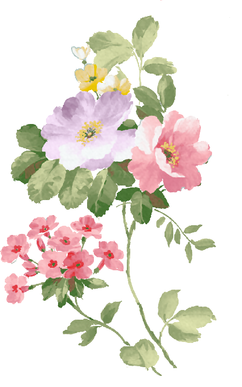 Dibujos Primavera Png Buscar Con Google Flower Painting Pretty Flowers Pictures Xray Flower