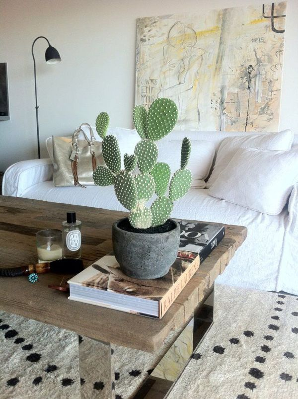 Potted Cactus Plant Living Room With White Couch And Wooden Coffee Table Bohemian Home