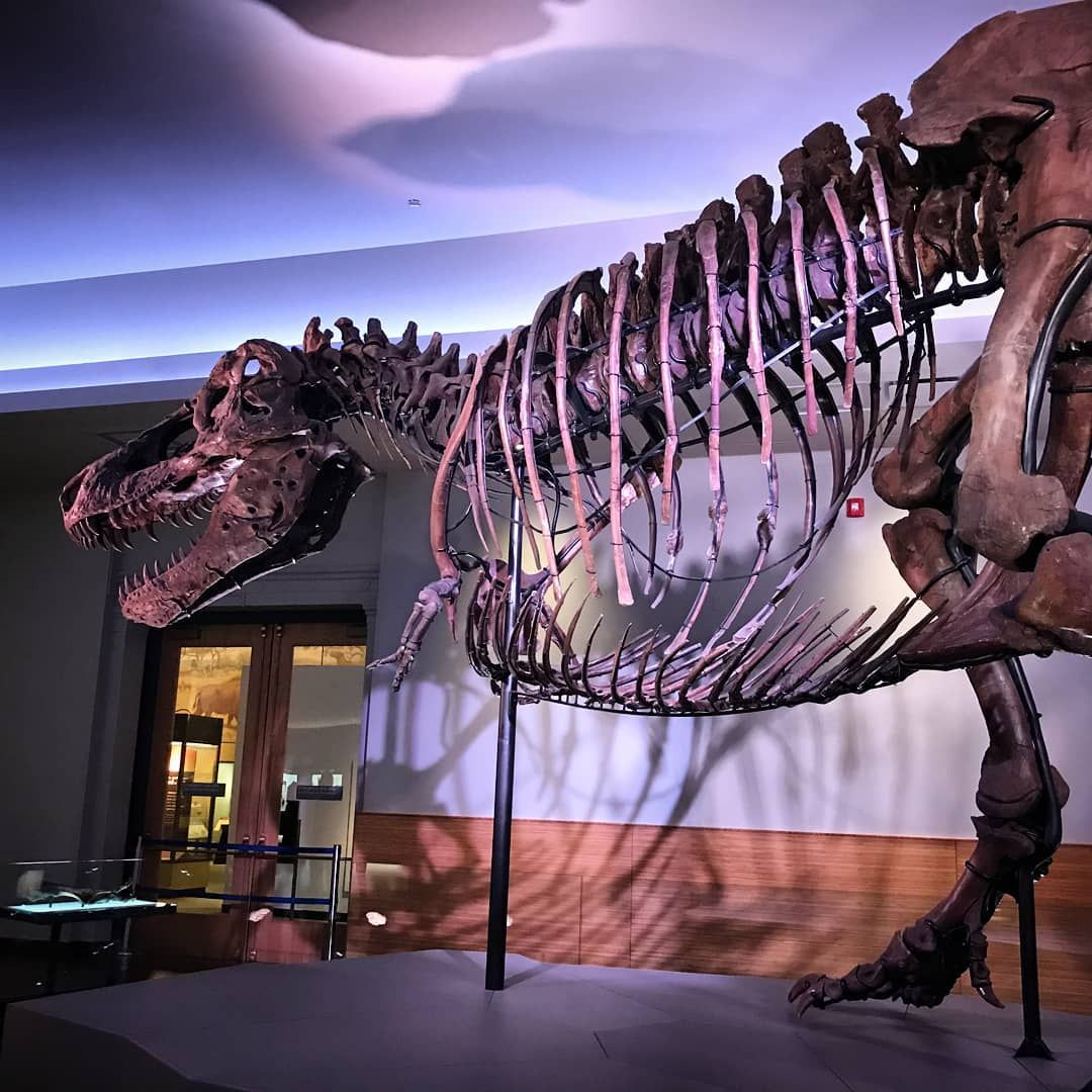 2019 Museum Free Days The Complete List Free museums