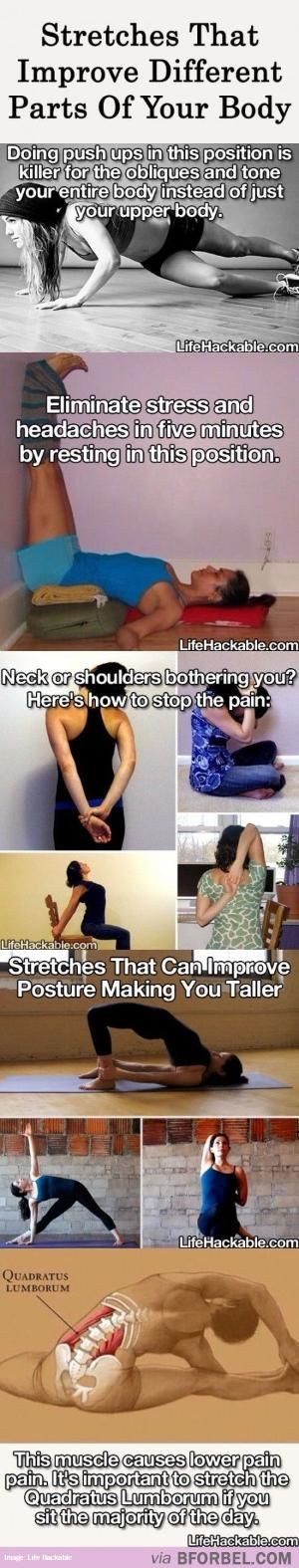 Types Of Stretches That Improve Different Parts Of Your Body… by janelle