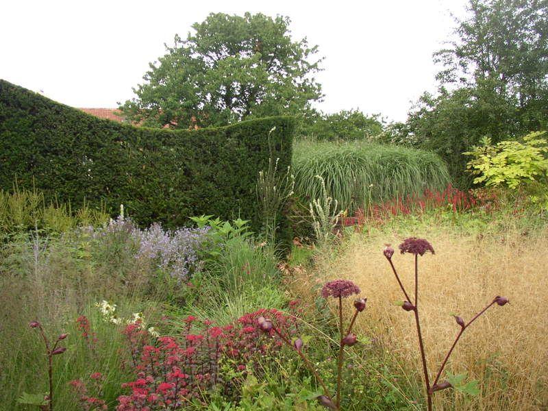 Hummelo piet oudolf google search plants pinterest for Piet oudolf private garden