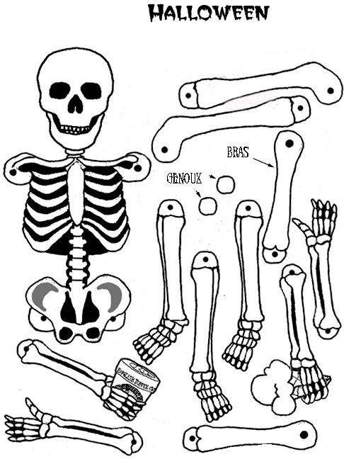 Squelette imprimer maths maternelle et sciences halloween pr scolaire halloween et - Coloriage corps humain maternelle ...