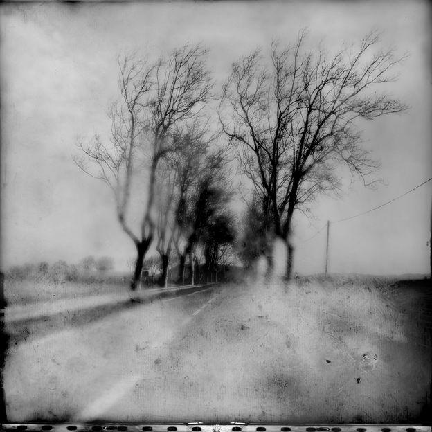 Editeur Monde De L Art Nature Inspiration Pinhole Photography Photo Art