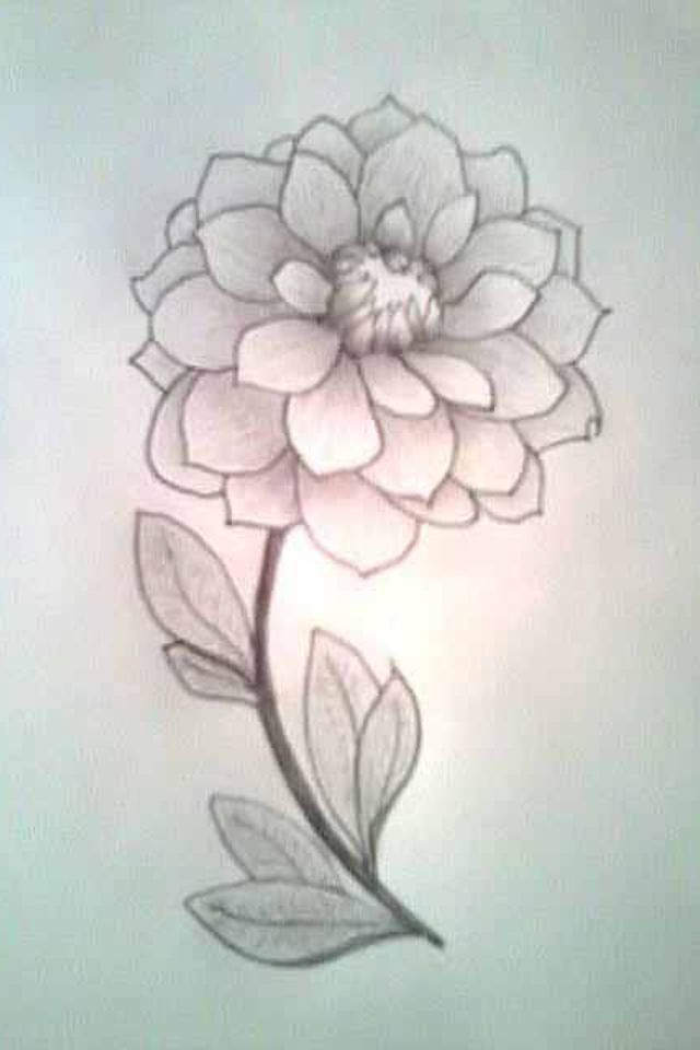 Cute but simple flower drawing  just 3 4 drawn on canvas  up close     Cute but simple flower drawing  just 3 4 drawn on canvas  up close look