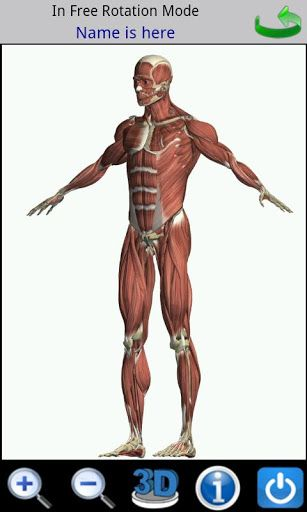 Visual Anatomy V34 Apk Requirements Android 16 Overview