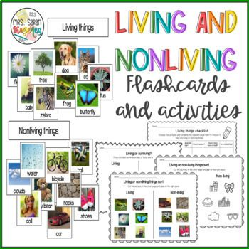 30+ Living and Nonliving Things Flash Cards and activities