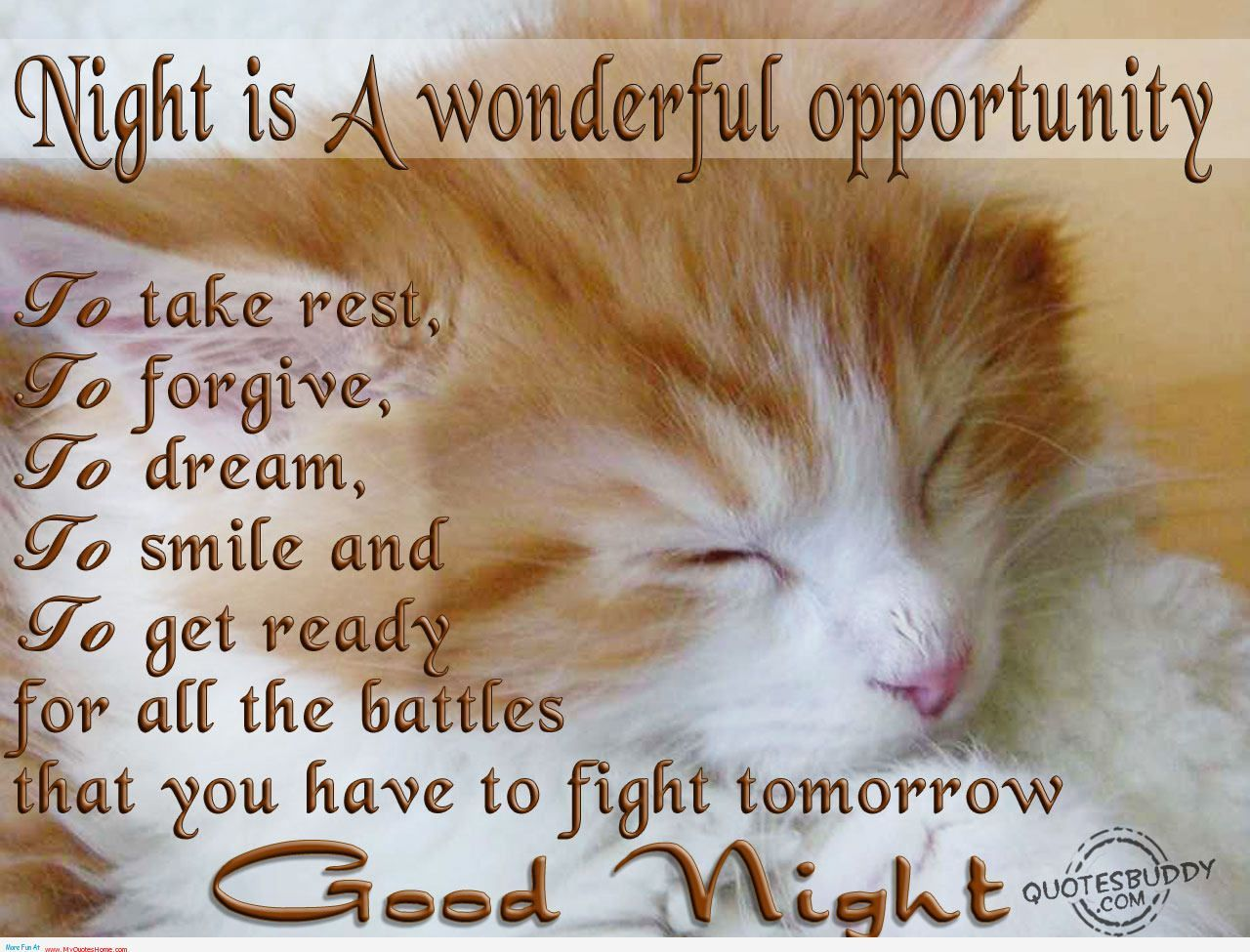 Night Lovers My Quotes Home Quotes About Inspiration Funny Good Night Images Good Night Friends Good Night Quotes