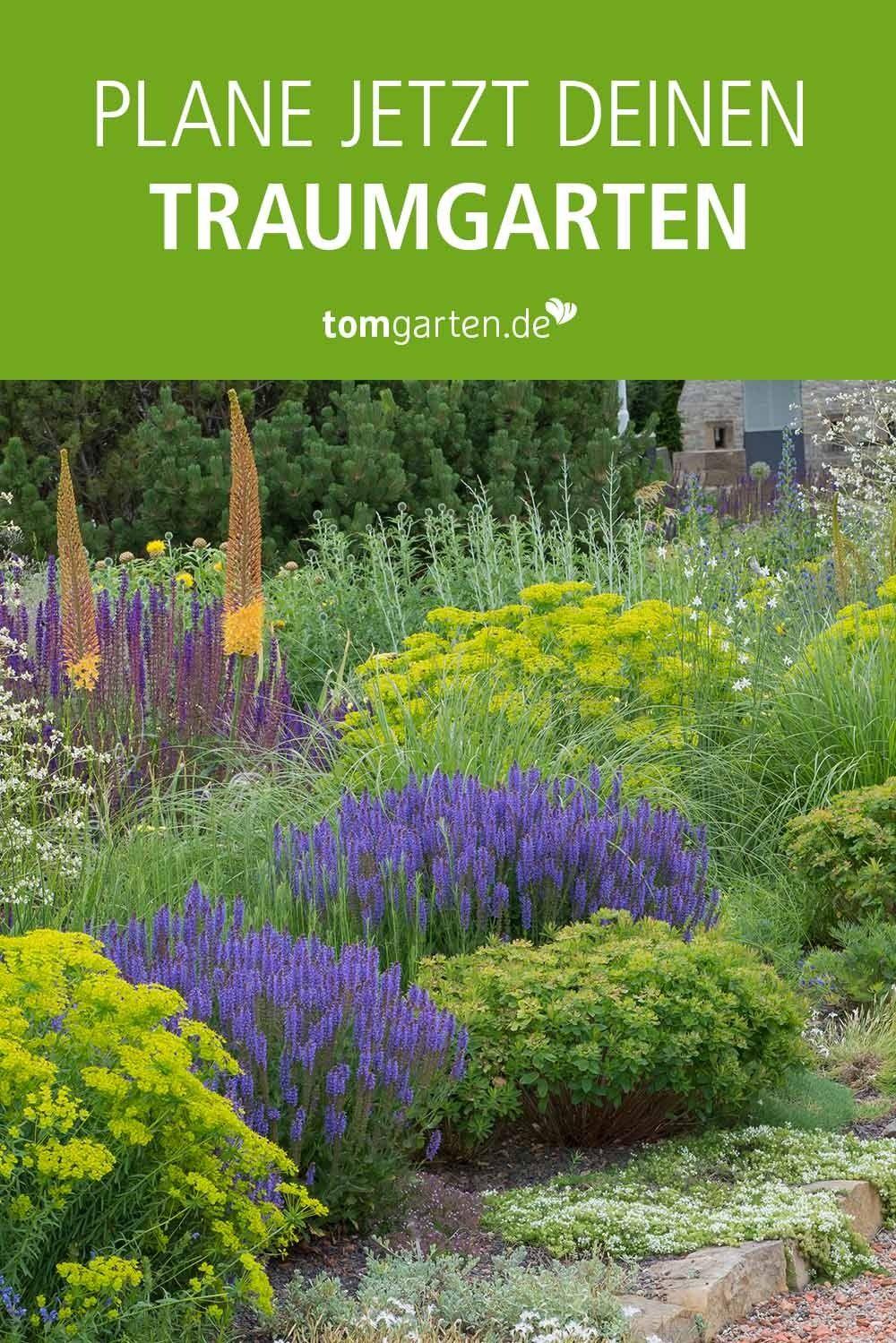 Alles Fur Deinen Traumgarten Online Finden In 2020 Traumgarten Pflanzen Garten