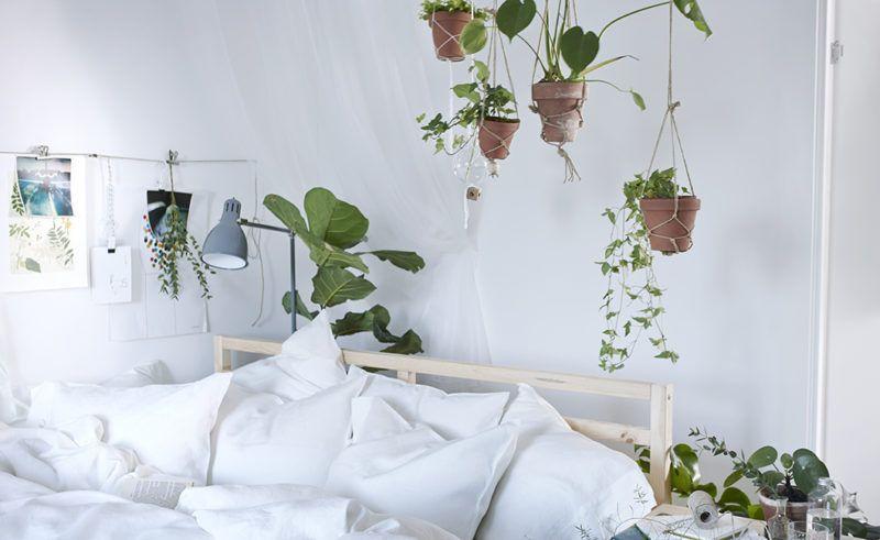Nordic bedroom full of plants, urban jungle