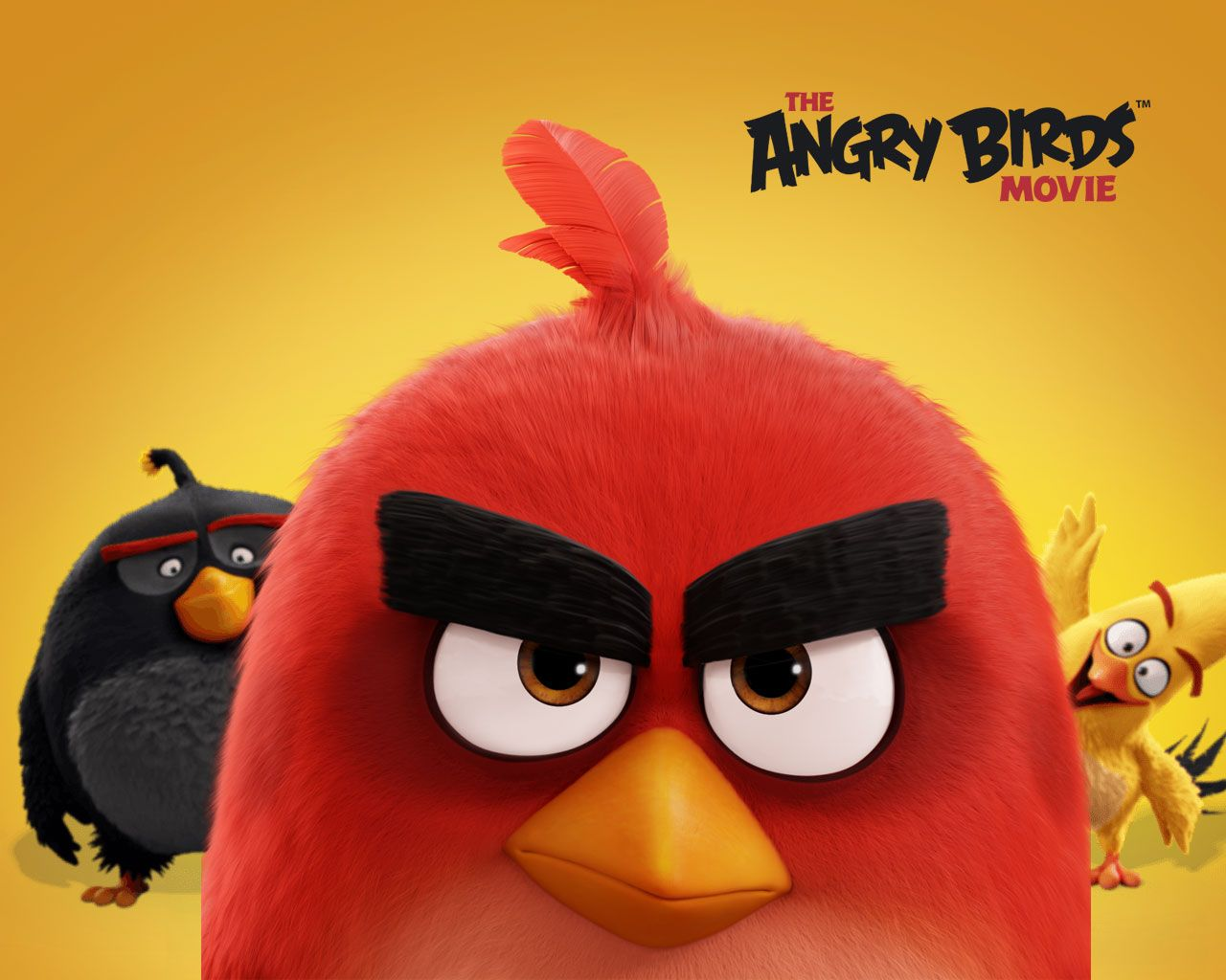 Awesome Movie Angry Birds New Bird Wallpaper Red Angry Bird