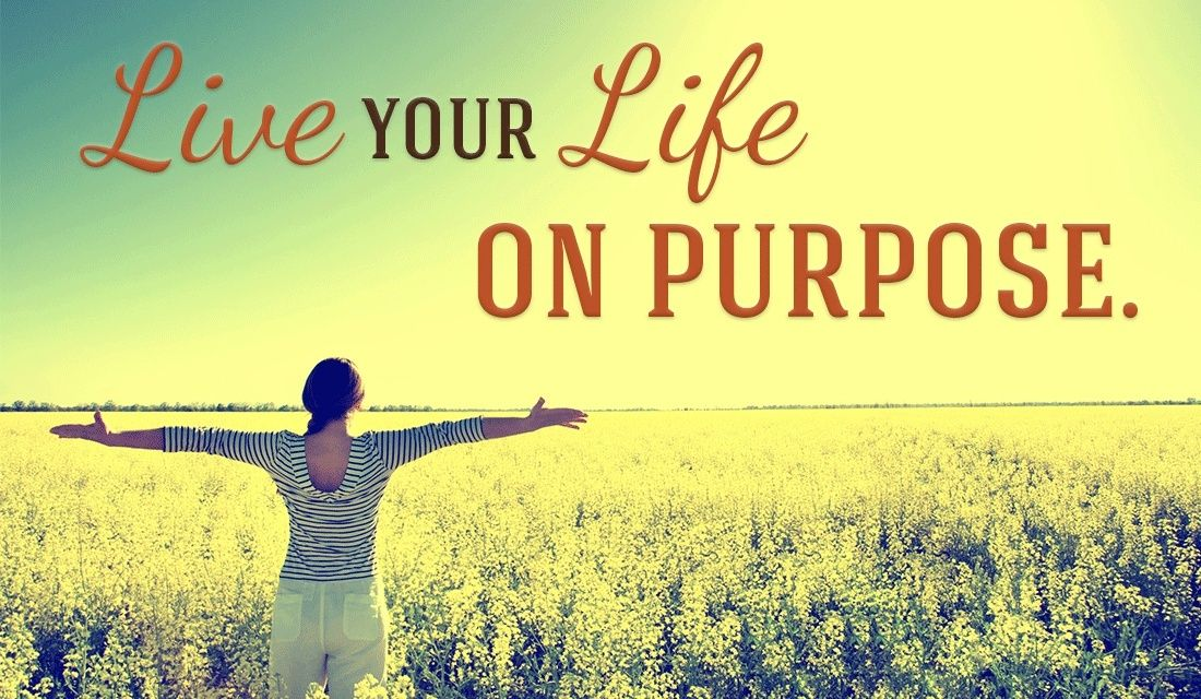 Every life has a purpose, some just haven't found it yet