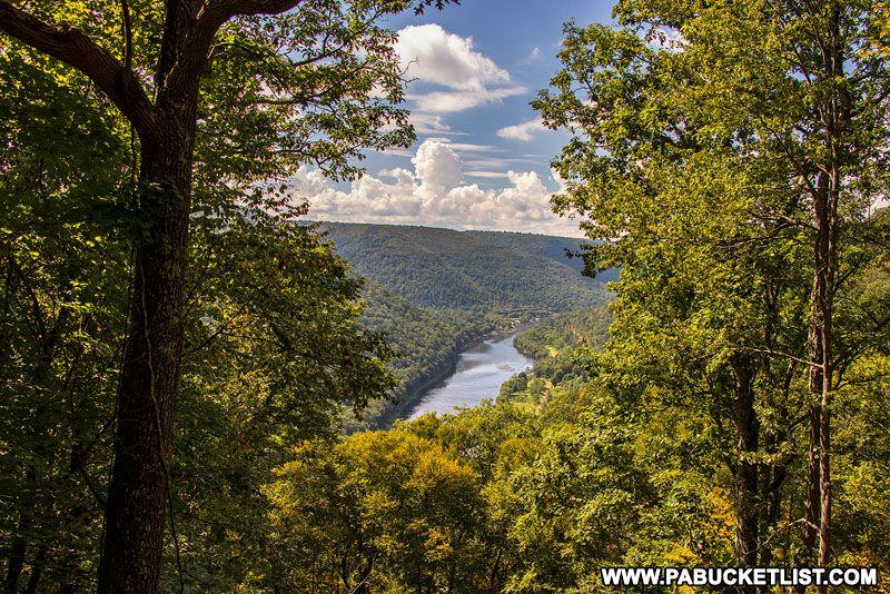 Pin On 15 Best Elk Viewing Destinations In Pennsylvania