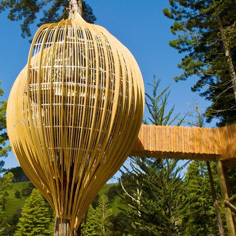 See the forest for the trees *New Zealand's Whimsical Yellow Treehouse  Restaurant Towers Above The