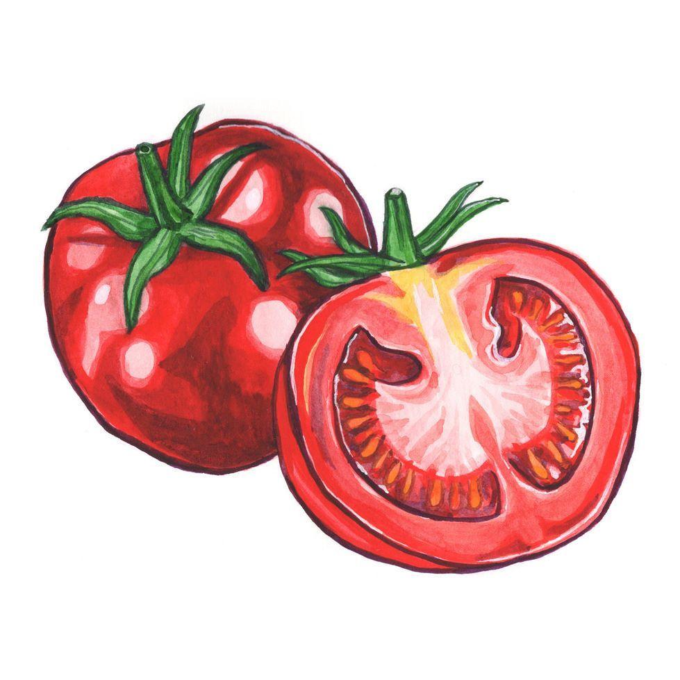 протяжении картинка помидор рисовать древних времён, когда