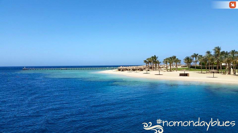 Se anche voi vorreste iniziare la settimana qui... CONDIVIDETE! #nomondayblues #MarsaAlam