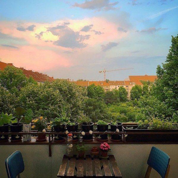 Urban Vegetable Gardening For Beginners: Planning My Balcony Garden : Small Garden Design Guide For