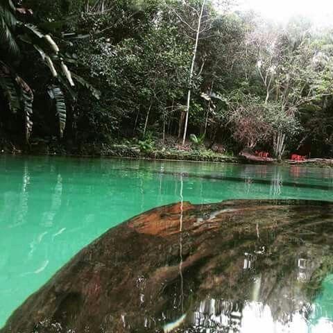 Igarapé-Açu Pará fonte: i.pinimg.com